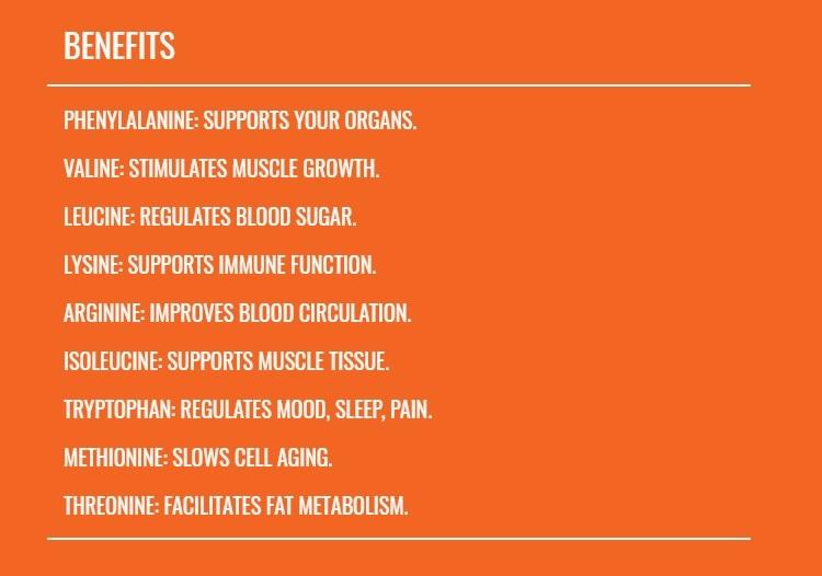 essential amino acids info